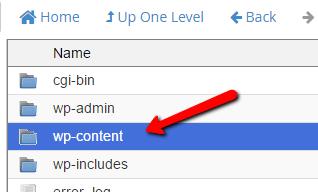 open wp-content folder