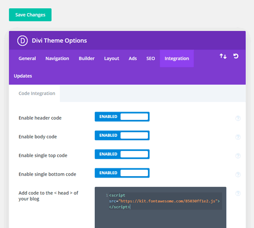 Font Awesome kit code pasted into Divi>Theme options>Integration