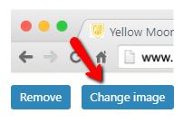 change the favicon on Divi website